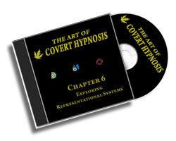 The Art Of Covert Hypnosis CD6